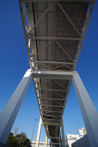 skywalk-01.jpg